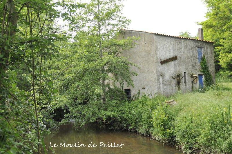 Moulin de Paillat - Champ Saint Père