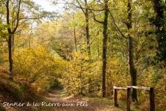 Sentier de la Pierre aux fées - Champ Saint Père